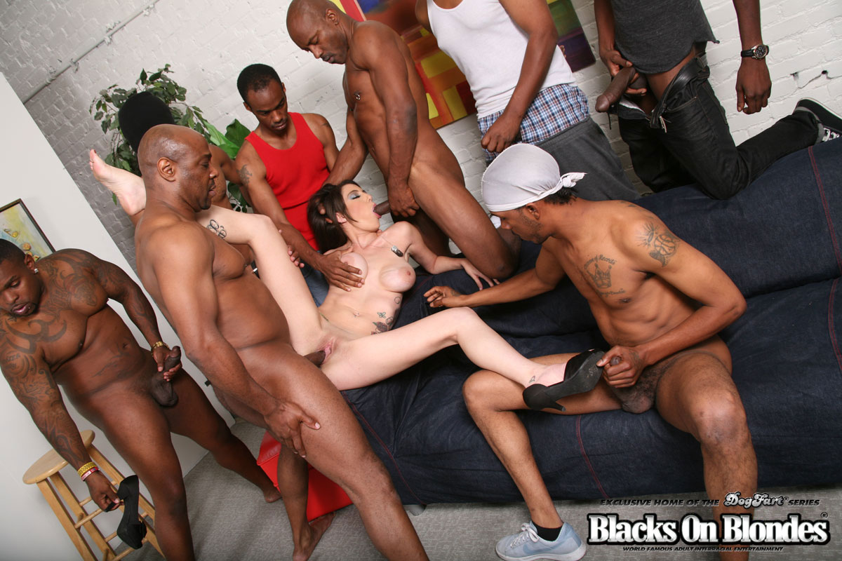 Wish blak cock white gang bang dsl's this one